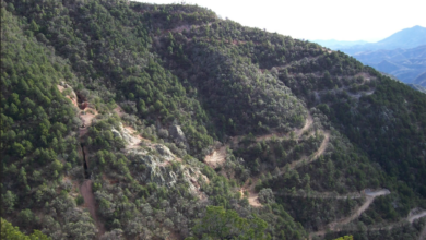 Photo of El Tigre Looks to Prove up Low Grade Resource in Century-old Silver Mine