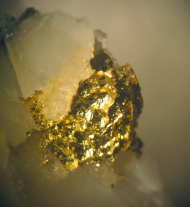 Gold and quartz from hydrothermal vein through a greenstone from the western Superior Province, Canada (jsjgeology)
