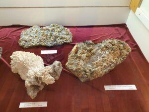 Minerals diversity of Banská Štiavnica
