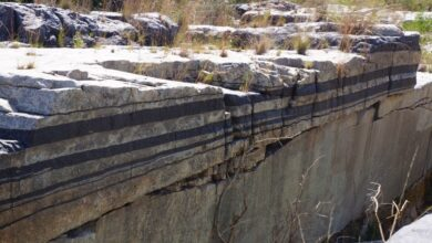 Photo of Geology of the PGE Deposits in the Bushveld Complex, South Africa