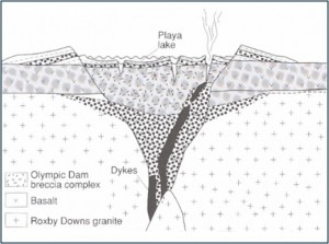 Formation of the Olympic Dam breccia and Mineral Deposit