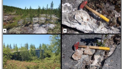 Photo of Critical Elements – Rose Lithium-Tantalum Project