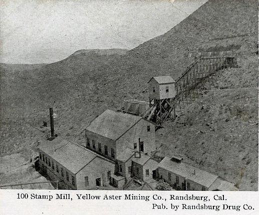 Yellow Aster Mine