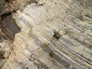 Metamorphic rock from an Archean greenstone belt.