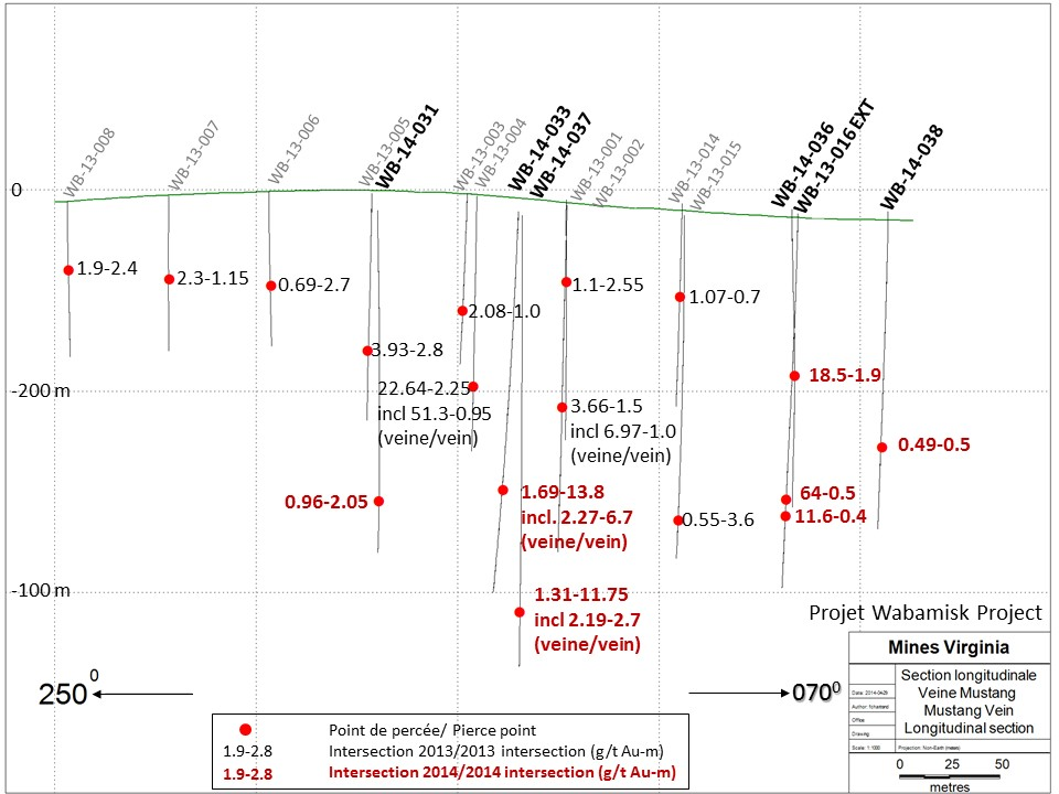 Cross-section of drill results and gold values from the Mustang Vein.
