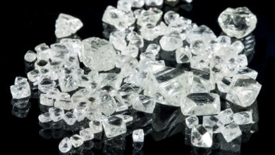 Photo of Peregrine Diamonds Seems to Always come out Smelling like Roses