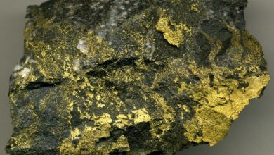 Photo of Old Gold: An Introduction to Archean Greenstone Belts