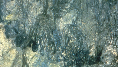 Photo of Komatiites and Ni-Cu-PGE deposits