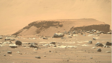 Photo of Searching For Signs Of Life: The Mars Rover