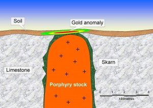 Skarn deposit and associated gold anomaly