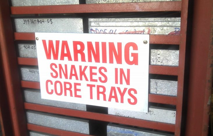 snakes-in-core-trays